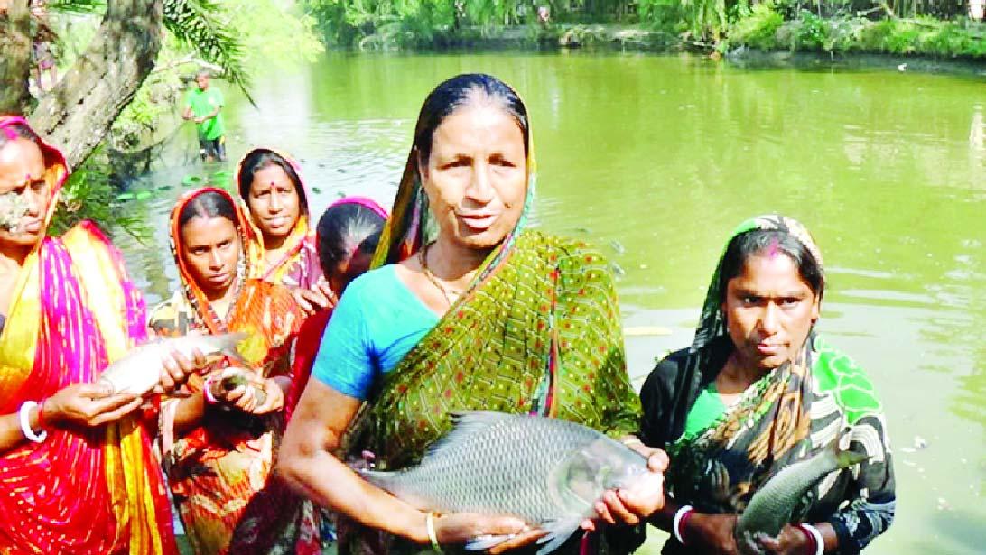 মাছের খামারে স্বপ্ন দেখছে ডুমুরিয়ার নারীরা