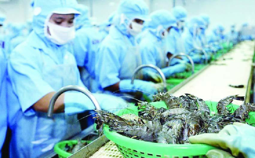দুই মাসে মাছ রফতানিতে আয় বেড়েছে ৩৯.৬৪ শতাংশ