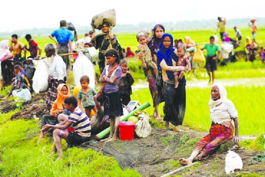 রোহিঙ্গা ইস্যুতে ঝুঁকিতে দেশের অর্থনীতি